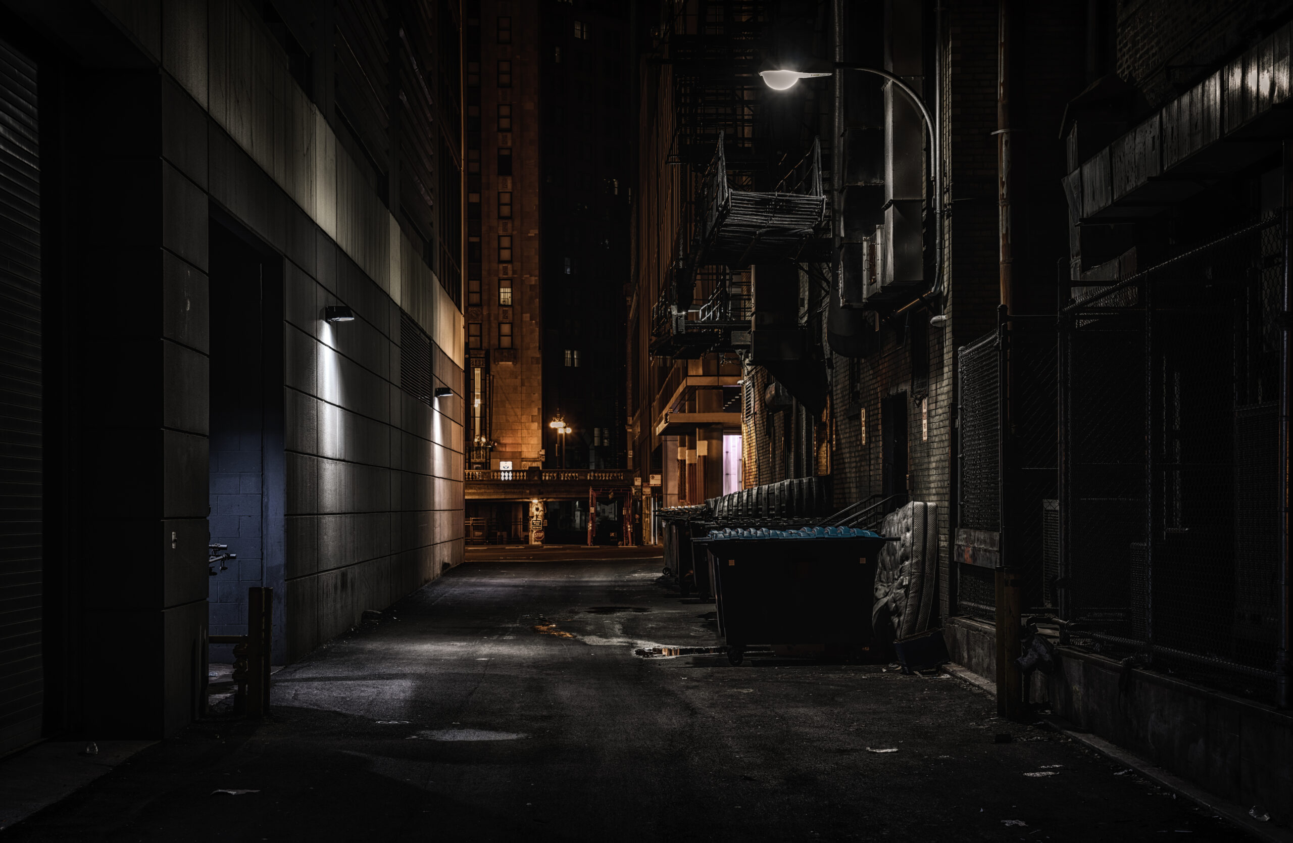 Discover Chicago Illinois Alleys